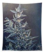 Frost Tapestry