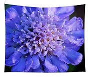 Frosted Blue Pincushion Flower Tapestry