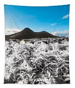 Frosted Over Hinterland Tapestry