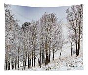 Frosty Aspen Trees Tapestry