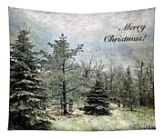 Frosty Christmas Card Tapestry