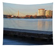 Frozen Dock On The Charles River Tapestry