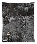 Frozen Dusk Tapestry
