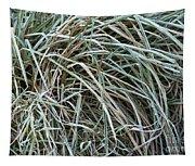 Frozen Grass - Ground Frost Tapestry