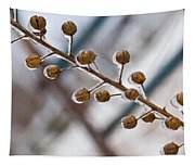 Frozen Seed Capsules In Time Tapestry