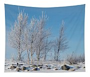 Frozen Views 2 Tapestry