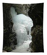 Frozen Zapata Falls Tapestry