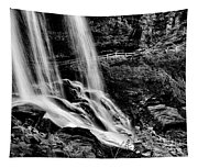 Fry Falls Overlook Tapestry