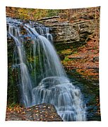 Fulmer Falls - Childs State Park Tapestry