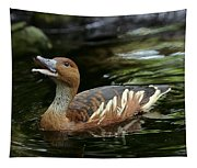 Fulvous Whistling Duck 2 Tapestry