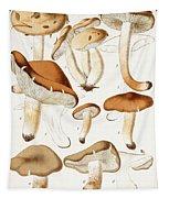 Fungi Tapestry