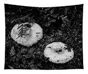 Fungi No 3 Bw Tapestry