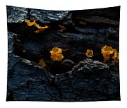 Fungus On Log Tapestry