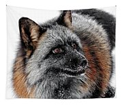 Funny Little Furry Face Tapestry