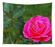 Fuschia Rose Tapestry