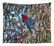 Gang Gang Cockatoo - Canberra - Australia Tapestry