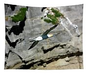 Gannet In Flight Tapestry
