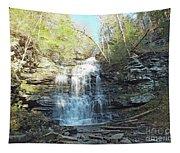 Ganoga Falls 3 - Ricketts Glen Tapestry