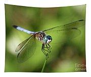 Garden Dragonfly Tapestry