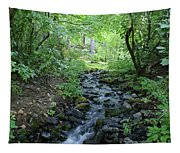 Garden Springs Creek In Spokane Tapestry