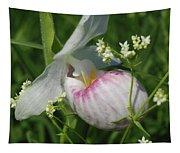 Garnished Showy Lady Slipper Tapestry