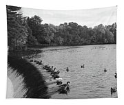 Ducks And Canada Geese On The Charles River Tapestry