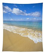 Gentle Waves Rolling Tapestry