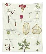 Geranium  Tapestry