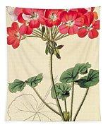 Geraniums Tapestry
