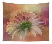 Gerbera From The Back Tapestry