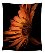 Gerbera Set On Black Tapestry