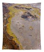 Geyser Basin Springs 4 Tapestry