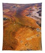Geyser Basin Springs 6 Tapestry