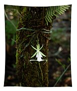 Ghost Orchid Of The Fakahatchee Strand Tapestry