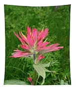 Giant Red Paintbrush Tapestry