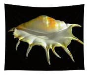 Giant Spider Conch Seashell Lambis Truncata Tapestry