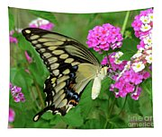 Giant Swallowtail Butterfly  IIi Tapestry