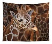 Giraffe - Camouflage Tapestry