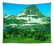Glacier Formed Tapestry