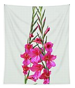 Gladioli Byzantinus In Love Tapestry