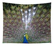 Glassy Peacock  Tapestry