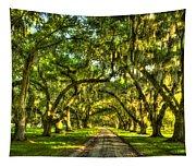 Glorious Entrance Tomotley Plantation South Carolina  Tapestry