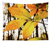Glowing Beech Leaf Branch Tapestry