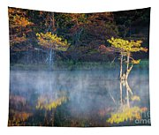 Glowing Cypresses Tapestry