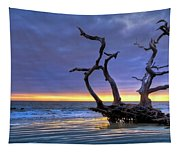 Glowing Sands At Driftwood Beach Tapestry