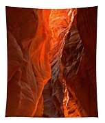 Glowing Walls Of Buckskin Gulch Tapestry
