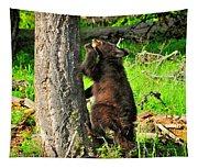 Go Climb A Tree Tapestry