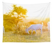 Goats Grazing At Sunset Tapestry