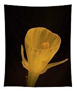 Golden Bells Carpet Daffodil With Black Background Tapestry