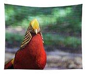 Golden Pheasant Tapestry